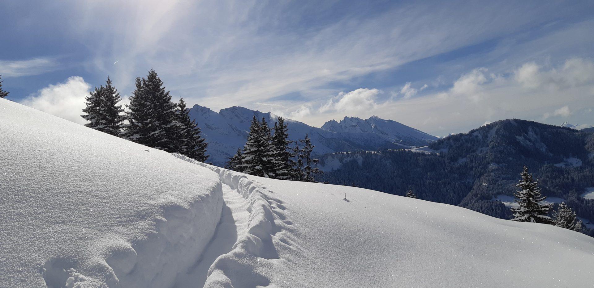 neige et paysage